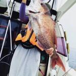 玄界灘にタイ人の友達と鯛ラバで鯛を釣りに行ってきたったい。その報告たい。