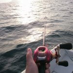 低価格でOK!鯛ラバ初心者にオススメの1万円以下の鯛ラバロッド5選!