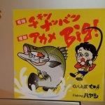 アカメ釣りで高知浦戸湾へ行くなら必ず寄りたい場所まとめ。アカメアングラーの定番スポットを紹介。