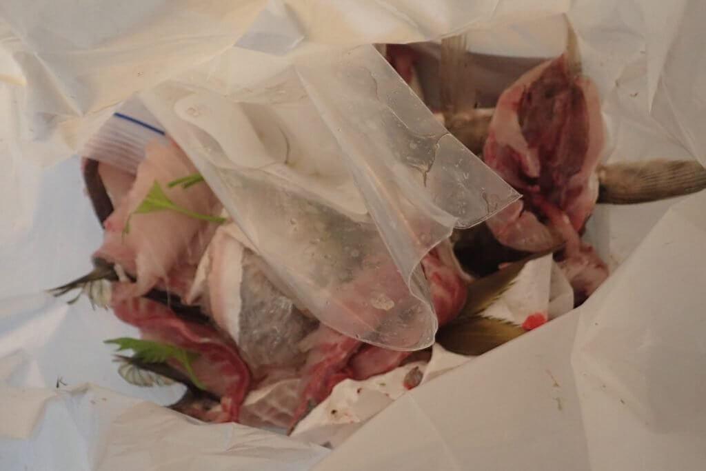 魚の生ゴミ