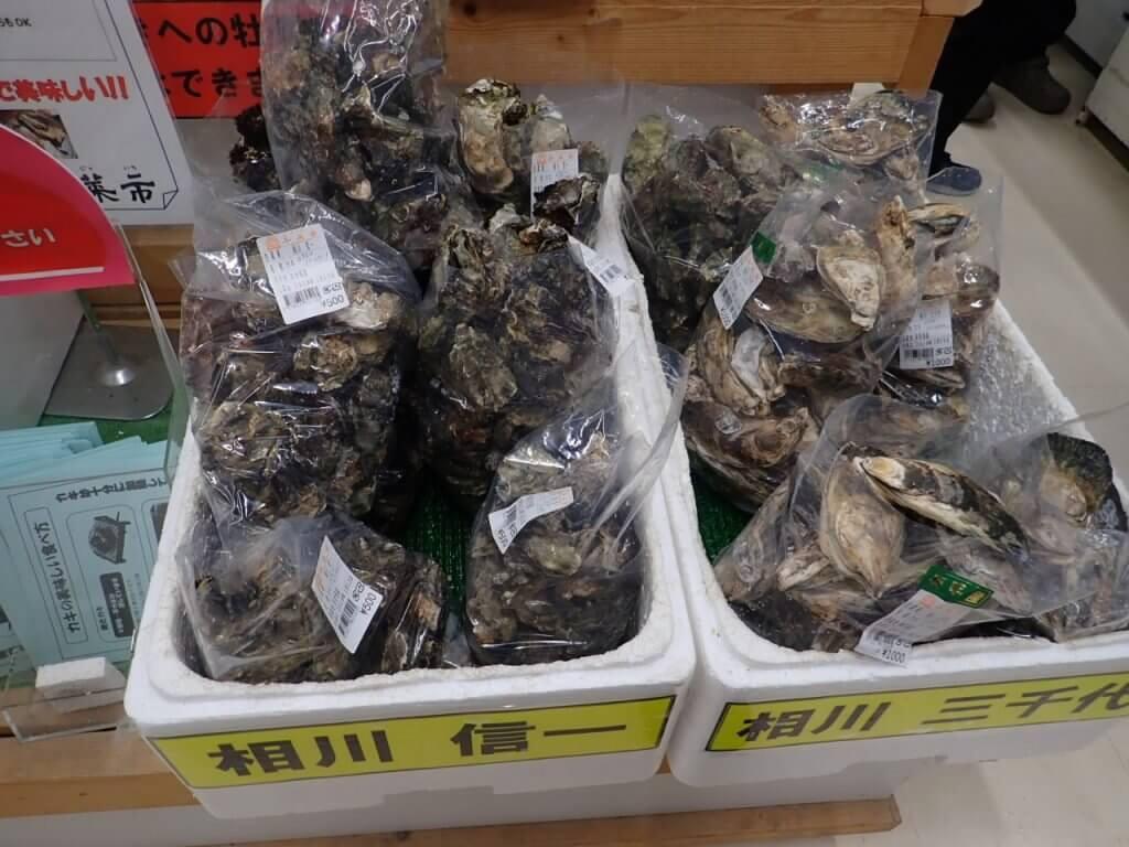 道の駅鹿島で売られている牡蠣