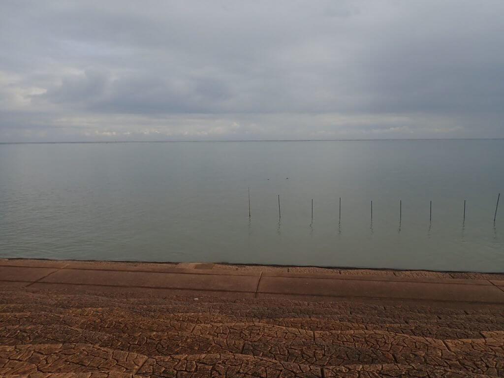 ハゼクチの生息する有明海