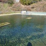 朝マズメの時間帯が終わり明るくなった佐賀の厳木町にある平之ニジマス公園