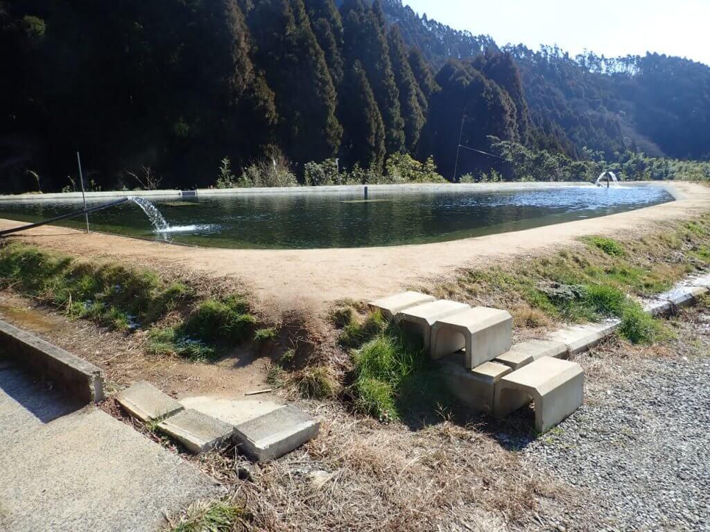 平之ニジマス釣り堀公園は小さな池が一つだけ