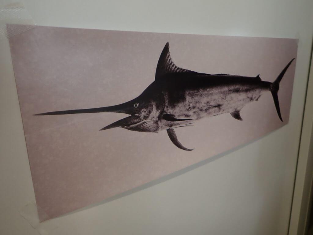 テスト出力したカジキのデジタル魚拓