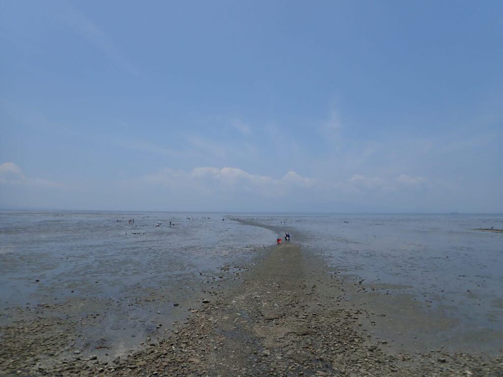荒尾漁協の目の前の荒尾干潟