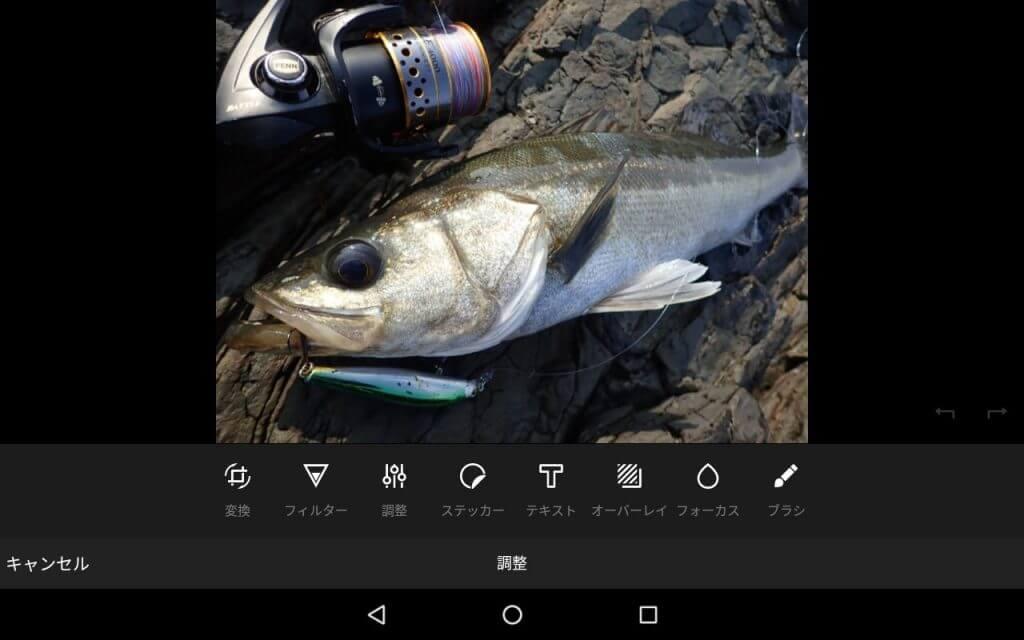 AmazonPhotoアプリ内で画像の編集も可能