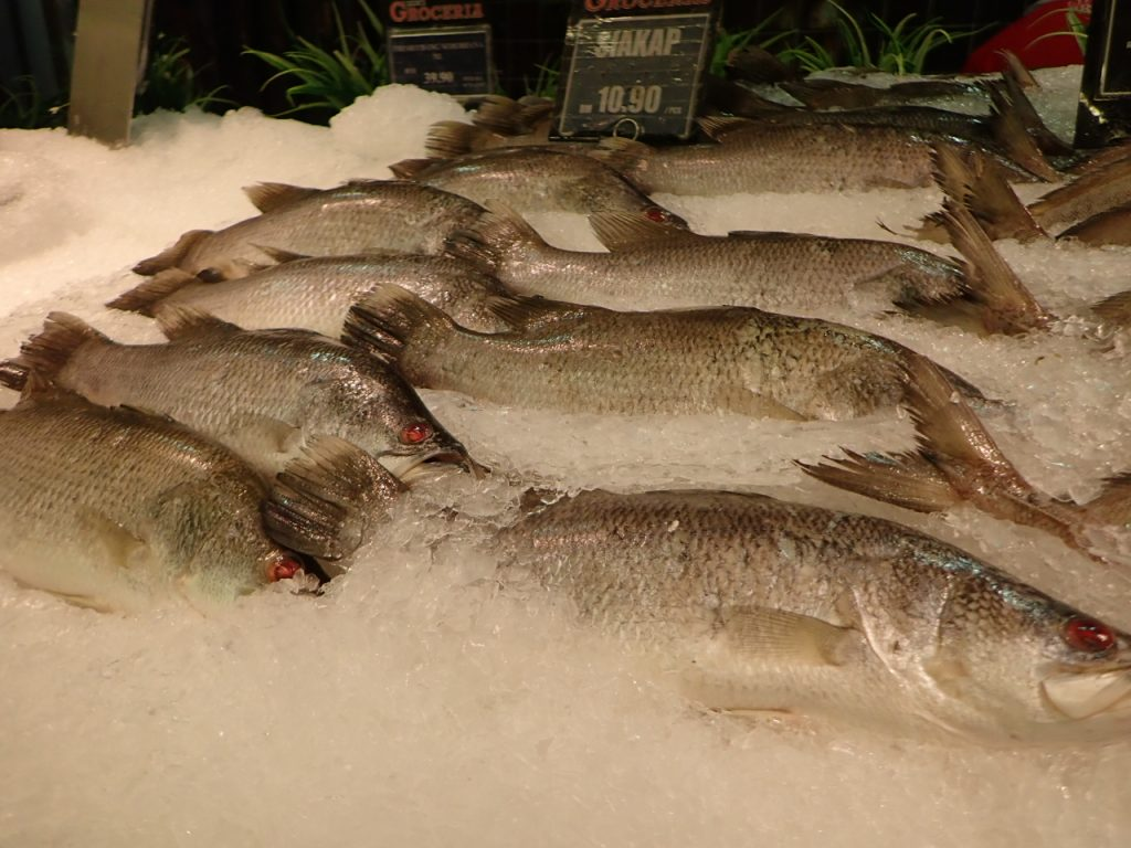 鮮魚コーナーにはバラマンディの姿が