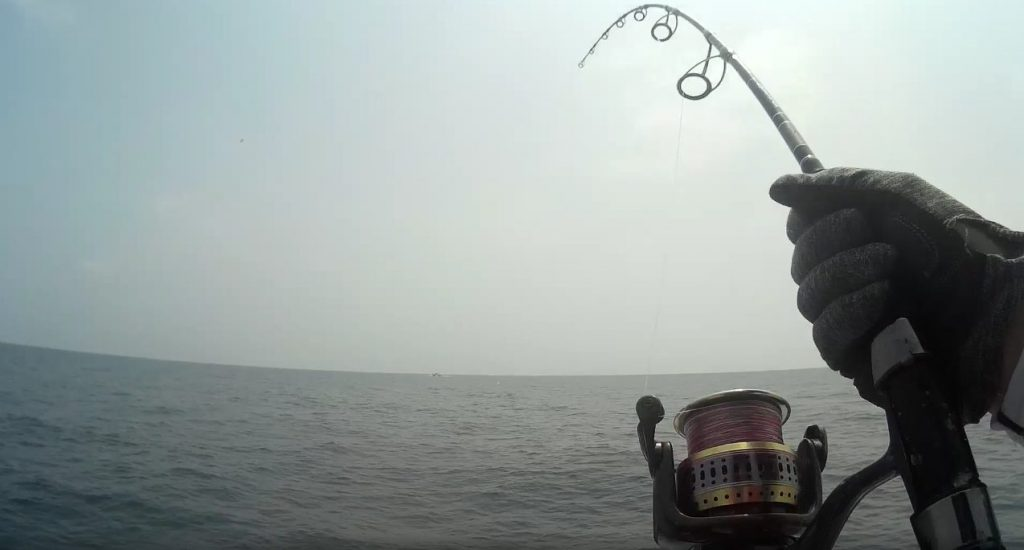 ポンピングで魚を寄せる